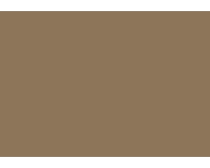 townandcountryhotels-logo3