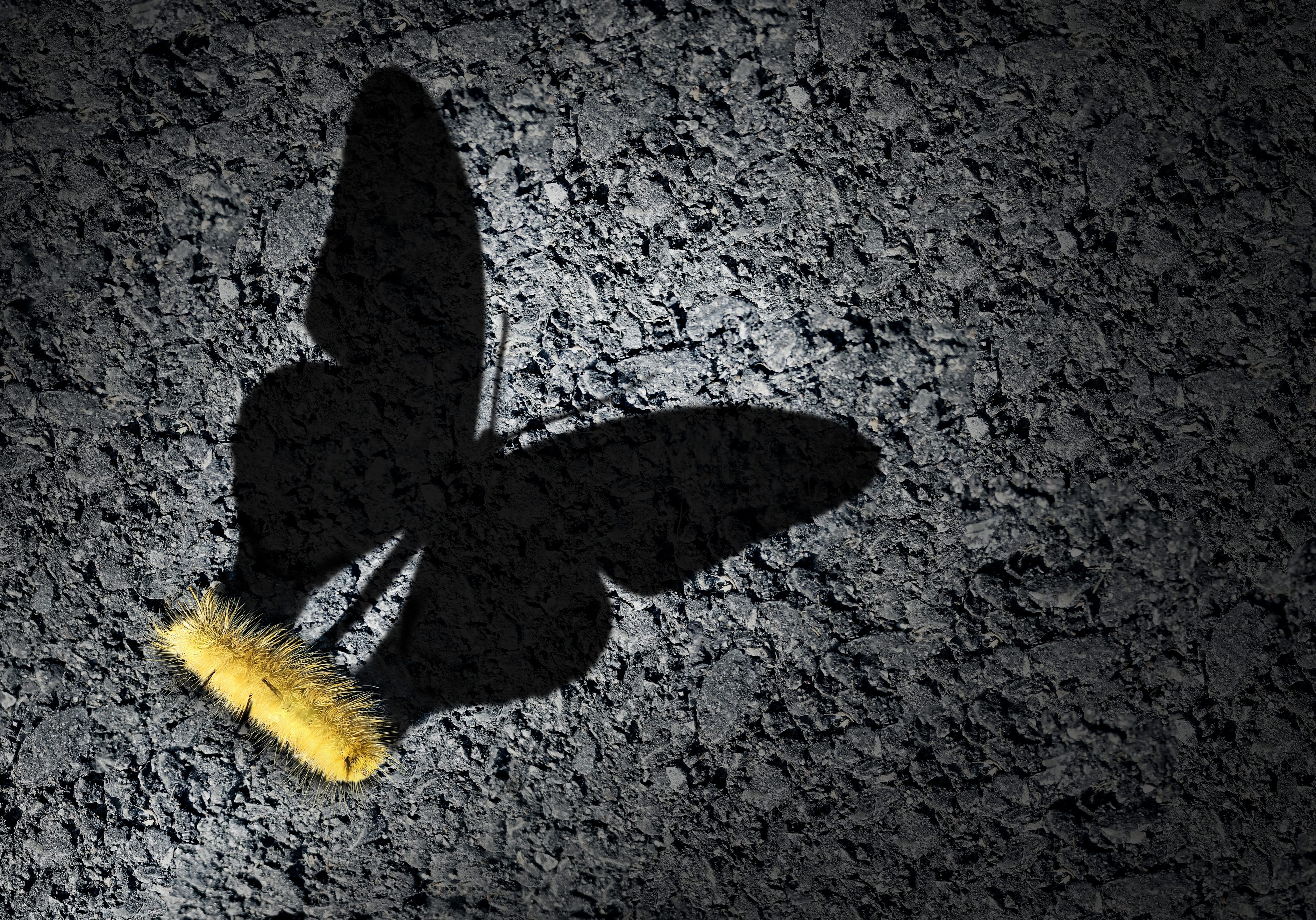 Aspiration concept and ambition idea as a caterpillar casting a shadow odf a butterfly as an achievement and hope for futur success symbol with 3D illustration elements.